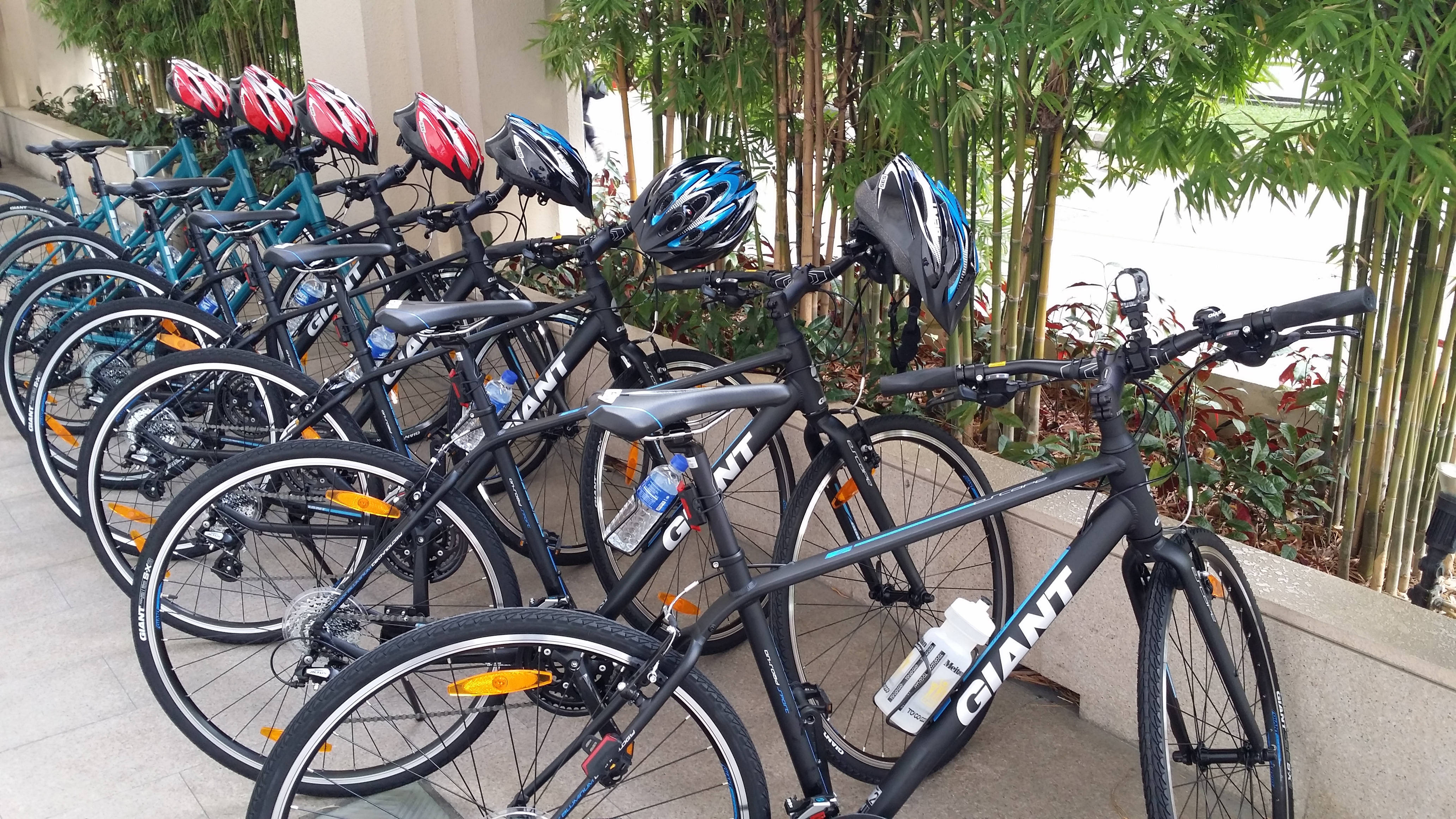 Eureka Cycling Bike Rental